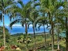 Meticulosity maintained landscaping w/ beautiful palms, plants, flowers & views!