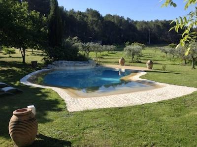 bordas de piscina em natural arborizado 15 000m2 de jardim, prados com cavalos .