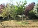Garten, Park