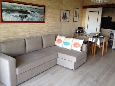 Le salon / canapé-lit