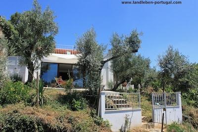 Siehe auch www.landleben-portugal.com