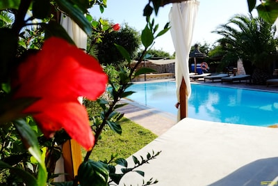 Terrace around the Pool