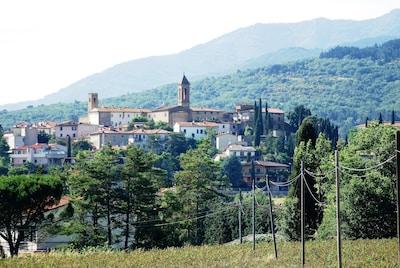 ....se vieni da Arezzo questo è il panorama che  appare di  Castiglion Fibocchi