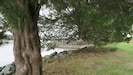 Pawleys Island hammock at waters edge