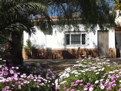 Finca Arboleda Orange Grove alojamiento, idílico, rural pero no remoto.