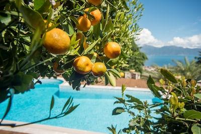 Aigio, Aigialeia, Western Greece, Greece