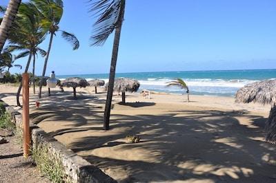 Beautiful beach steps away from Condo 226