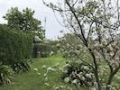 Arbres fruitiers au printemps le long de l'allée qui mène à la maison