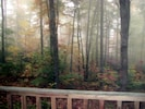 Sit on the porch and watch the morning come alive