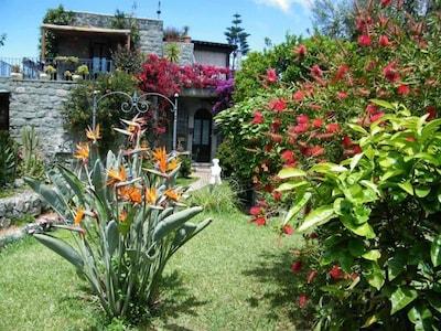 Country Cottage / Gite - ISCHIA