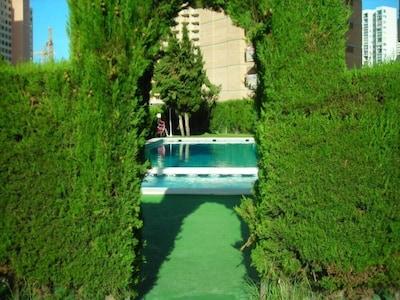 Apartamento orientado al sur con 2 piscinas, a 700 metros de la playa, piso 14