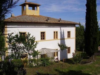 Casa Vasalone, die Westseite zum Park