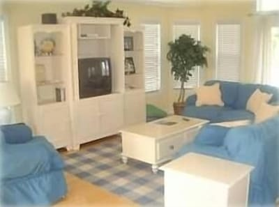 Spacious Living Area with pullout couch