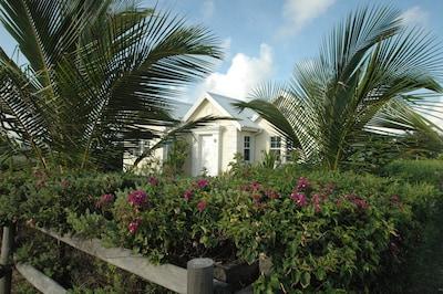 Beautiful Bougan Villa