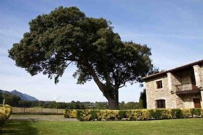 Casa de Aldea La Piniella para 10 personas