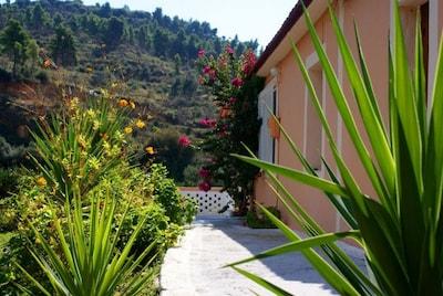 Kato Samiko, Andritsaina-Krestena, West-Griekenland, Griekenland