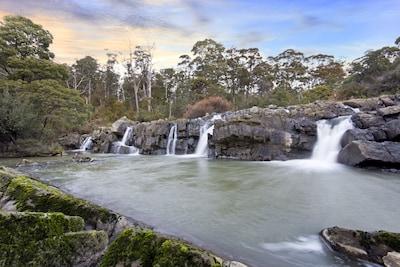 Alum Cliffs State Reserve, Chudleigh, Mole Creek, Tasmanien, Australien