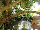 Waterfall in the Center Garden Area