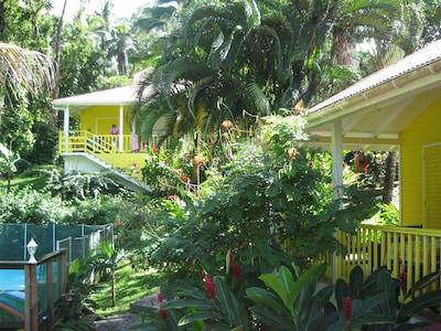 Piscine et gîtes, au milieu de la végétation