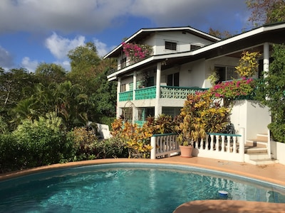 House and pool
