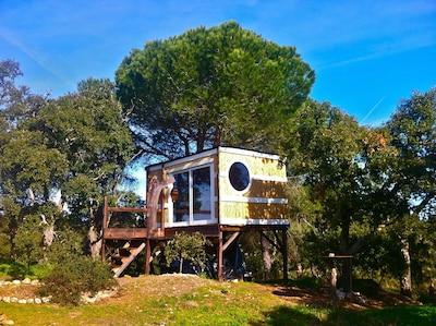Tree-cabane