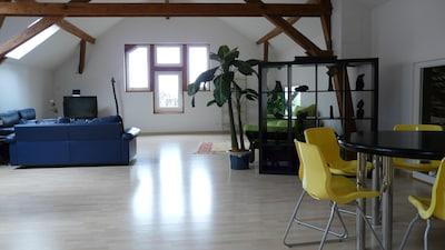 Salon loft avec coin salle à manger, cuisine américaine, canapé lit, canapé et V
