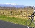 Enjoying local vineyards and Mt. Canigou by bike