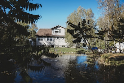 View from pond. Back of cottage