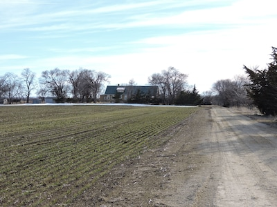 Farmhouse, driveway, and fields