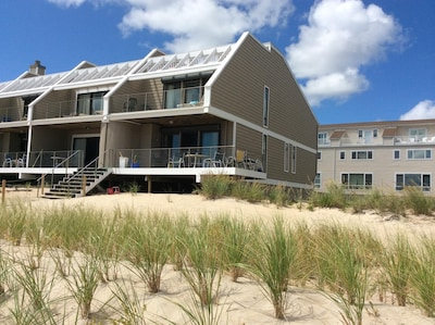 View from the beach.  Built right on the stable sand dunes.