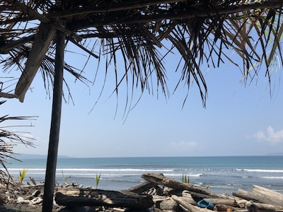 View from the beachside palapa