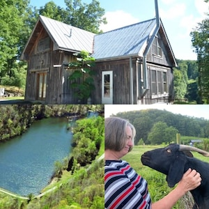 Love Shack - charming remote Cabin in the woods. Hottub!