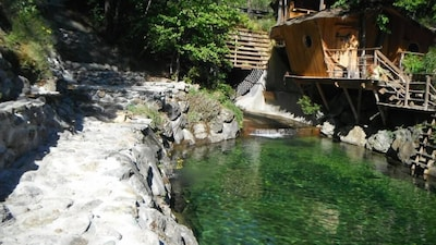 vue de la piscine naturelle