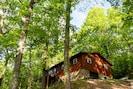 Cozy Cabin Nestled in the tree tops!