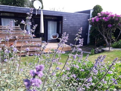 Der kleine süsse Garten im Mai