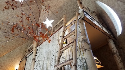 Birch ladder to the loft, star skylights, moon window, bedroom behind the wall