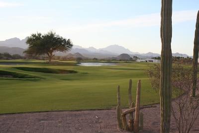 Golf course, #10