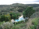 Pool surrounded by olive groves and nature
