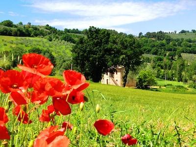 Gli appartamenti nelle verdi colline di Bevagna (Umbria) - fantastico panorama