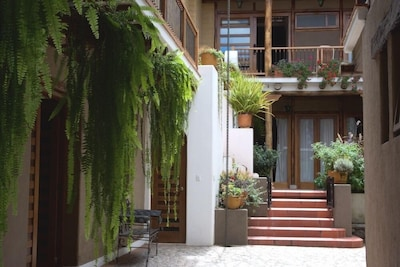 The vicuña studio flat is above the ferns, off the left balcony