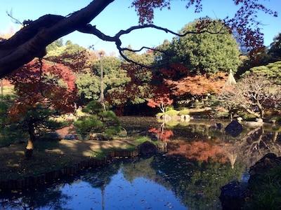 Kyu-Furukawa garden 10 mins walk from this apt