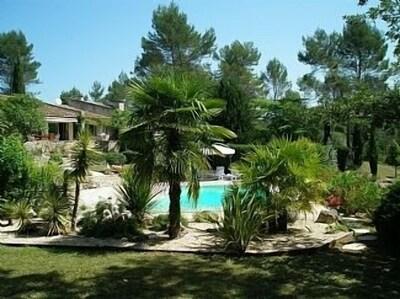 Fabulous pool 11 x 5 metres