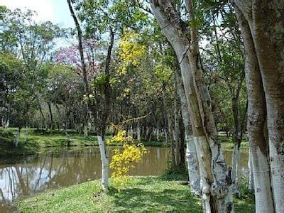 Zologico SBC, São Bernardo do Campo, São Paulo (staat), Brazilië