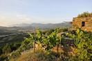 Pagliaghju di Cannetu   vue cap Corse