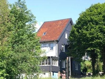 Pension Oberberg eingerahmt von alten Linden