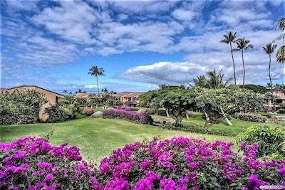 Ulua Beach Park, Kihei, Hawaii, United States of America