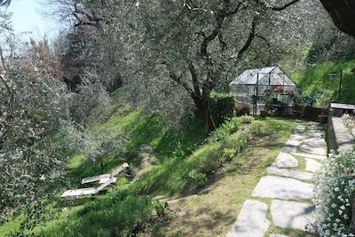 ANTICO ULIVETO - Vue sur le lac appartement à Bellagio