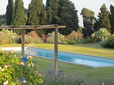 The pool area and flowers around it