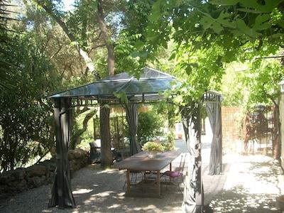 Coin jardin ombragé  privatif