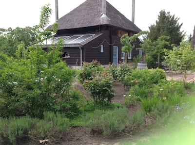 haybarn and rose garden